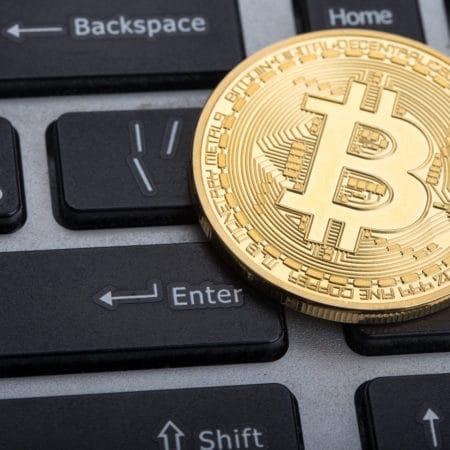 Bitcoin Wettanbieter